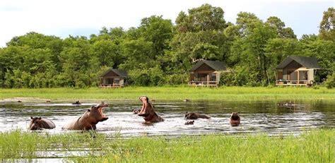 Moremi game reserve Botswana ,Moremi game reserve lodges