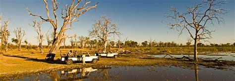 Moremi Game Reserve National Park | Luxury Botswana Safari