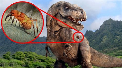 Most SURPRISING Recent Discoveries About DINOSAURS!   YouTube