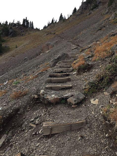 Mount Ellinor Trail   Washington | AllTrails