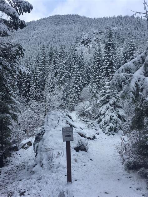 Mount Washington Trail   Washington | AllTrails