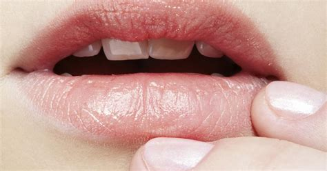 Mouth bacteria may hold clues to pancreatic cancer risk ...
