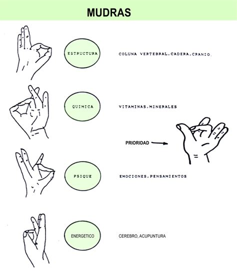 MUDRAS  2  | Kinesiologia holistica Kinesiology holistic ...