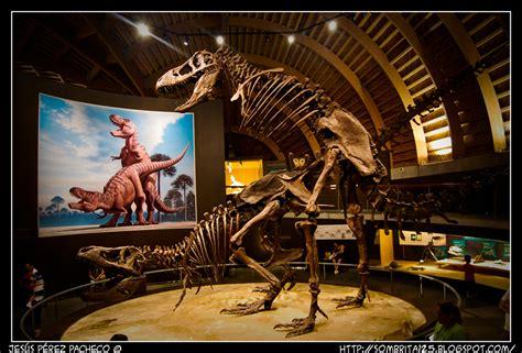MUJA el Museo Jurásico de Asturias en Colunga   Fotonazos ...