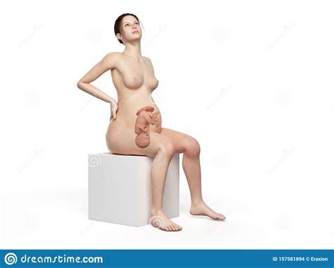 Mujer Embarazada Con Dolor De Espalda Stock de ilustración ...