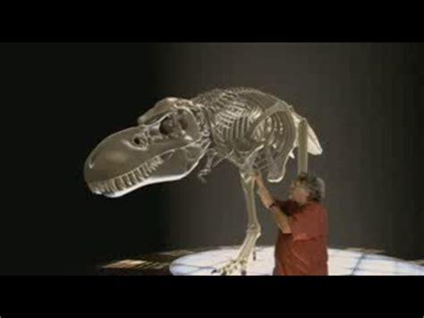 Mundo Terópodo: La verdad sobre los Dinosaurios Asesinos