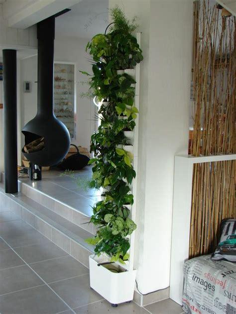 mur vegetal pinterest
