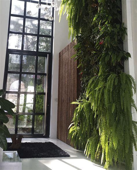 Muro vegetal de plantas naturales   Mon Toit Vert ...