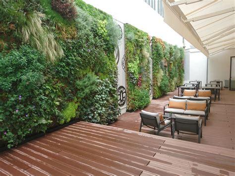 Muro vegetal de plantas naturales   PANOT VEGETAL   a ...