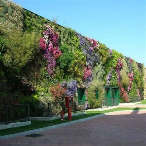 Muro vegetal de plantas naturales   VÈGÈTALIS   PEVERELLI ...