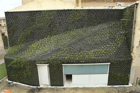Muro vegetal estabilizado / de plantas naturales / de ...