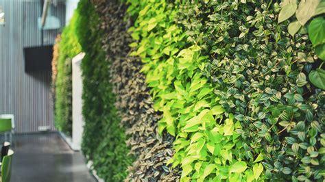 Muro vegetal estabilizado   LIF   Natural Greenwalls   de ...