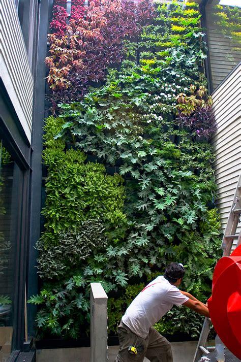 Muro Verde Altavista de Regenera Mx   Fábrica Ecológica ...