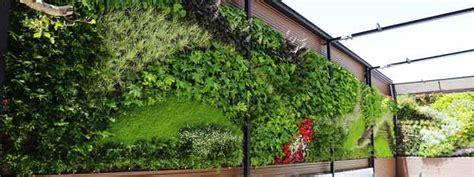Muro verde   Expertos en la creación de muros verdes