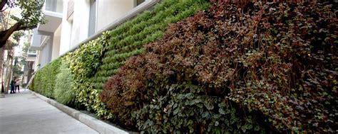 Muro Verde Natural   Pisos y Persianas