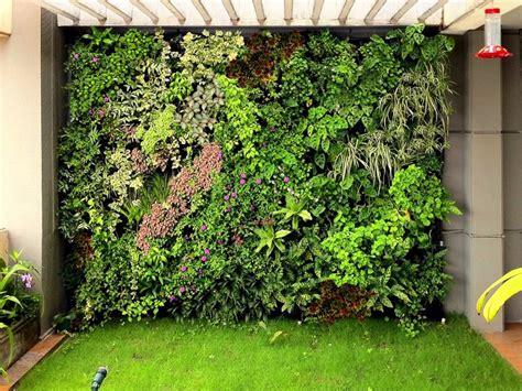 Muro Verde O Techo Verde Modular Panel De 30 X 30 Cms ...