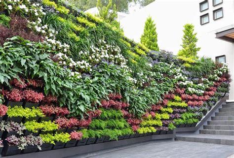 Muro verde pedregal nubes jardines modernos de regenera mx ...