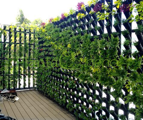 Muro verde tubular, CDMX   Planta Oxígeno Espacios con Vida