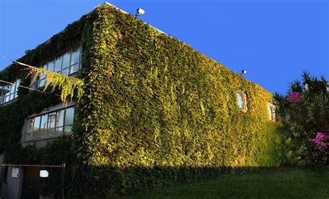 Muros Vegetales / Ambientaciones térmicas de coloraturas y ...