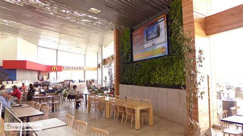Muros Vegetales   VerdeActivo