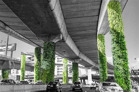 Muros Verdes   Anverso