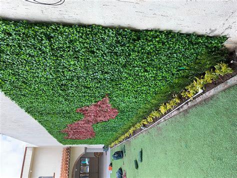 MUROS VERDES ARTIFICIALES   Garden express