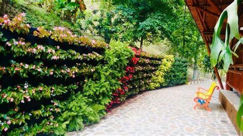 Muros Verdes Jardín Vertical Natural 16 Bolsas   $ 2,900 ...