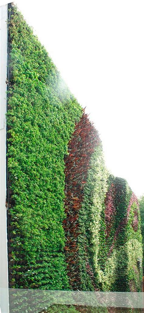 Muros Verdes Naturales   $ 1.00 en Mercado Libre