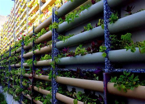 Muros Verdes Naturales Económicos   $ 975.00 en Mercado Libre