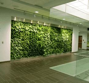 Muros verdes naturales