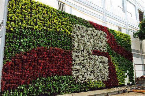 Muros Verdes Naturales – Te Quiero Verde