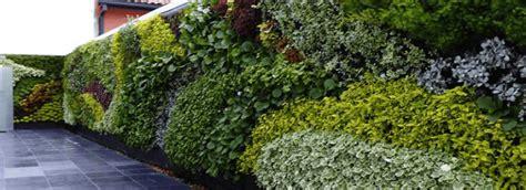 Muros Verdes: Naturales vs Artificiales   Generación Verde