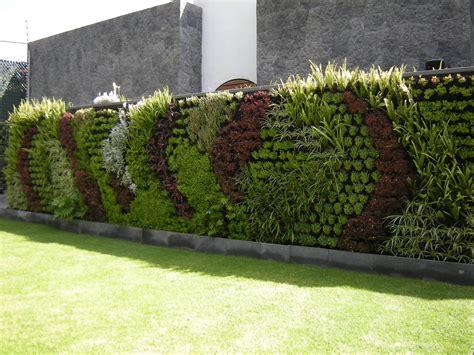 Muros Verdes naturales vs artificiales   Generación Verde