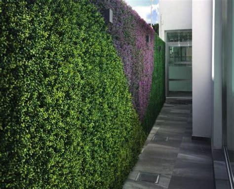 Muros Verdes   Regama del Bajío