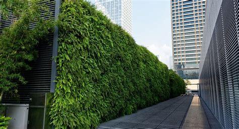 Muros Verdes 】 ※ ¿Qué son y qué ventajas tienen?