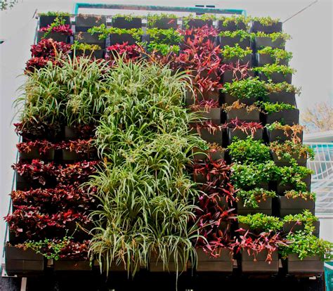 Muros verdes • Teorema Ambiental