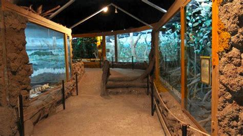 Museo de Historia Natural  Jorge Ibarra , espacios llenos ...