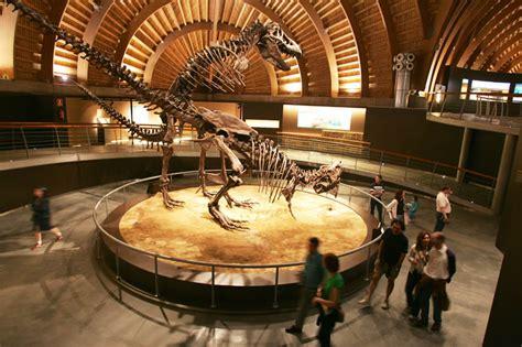 Museo del Jurásico de Asturias  MUJA    El Comercio