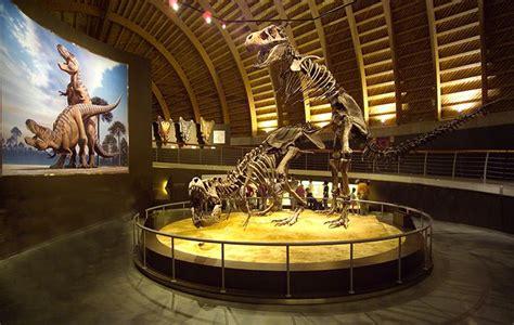 Museo del Jurásico de Asturias MUJA