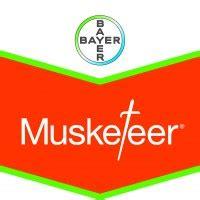 Musketeer, Herbicida Bayer | Diflufenican | Iodosulfurón ...