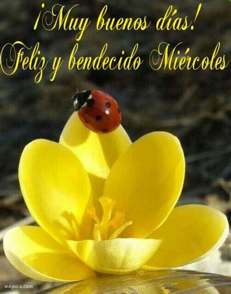 ¡Muy buenos días! Feliz y bendecido Miércoles | Saludos ...