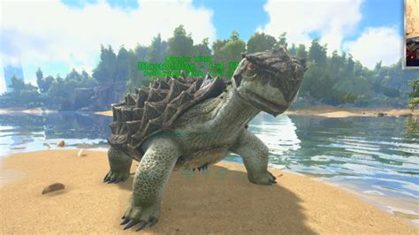 MY FIRST DINO!   ARK SURVIVAL EVOLVED #2 with Vikkstar ...
