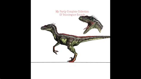 My Partly Complete Collection Of Velociraptor Sounds   YouTube