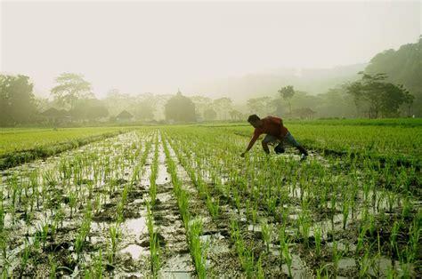 MyFarmInfo Blog | Crop Insurance, Soil Testing, Crop ...
