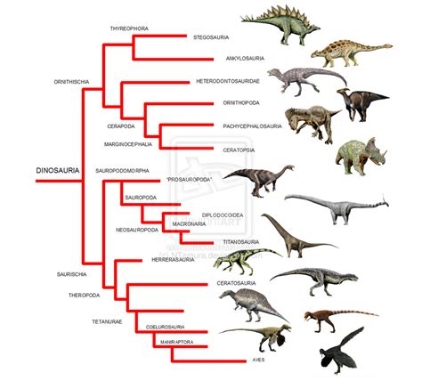 Myths and Misconceptions #1: Allosaurus rex, or That is ...