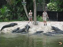 Naples Zoo   Wikipedia
