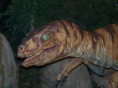 National Velociraptor Awareness Day   Holiday   Checkiday.com