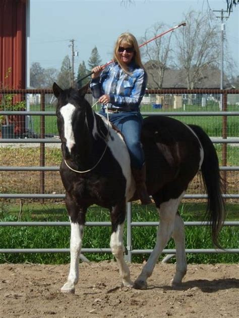 Natural Horsemanship | Summer Wind Ranch