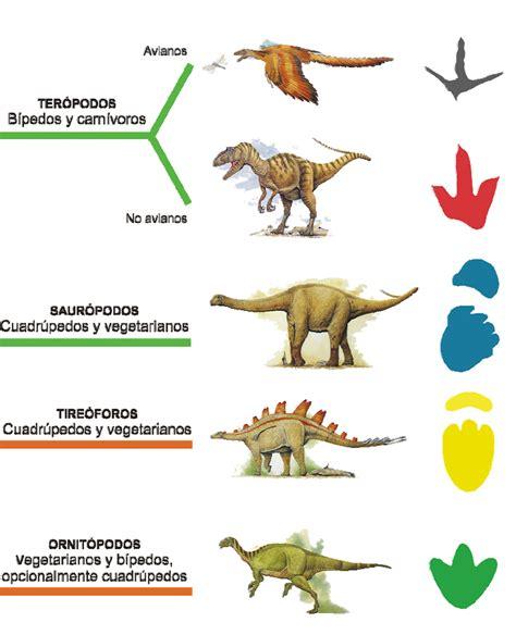 Naturaleza Cantábrica: Caminando entre dinosaurios