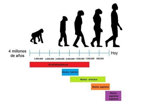 necesito por favor la linea del tiempo de la evolución de ...
